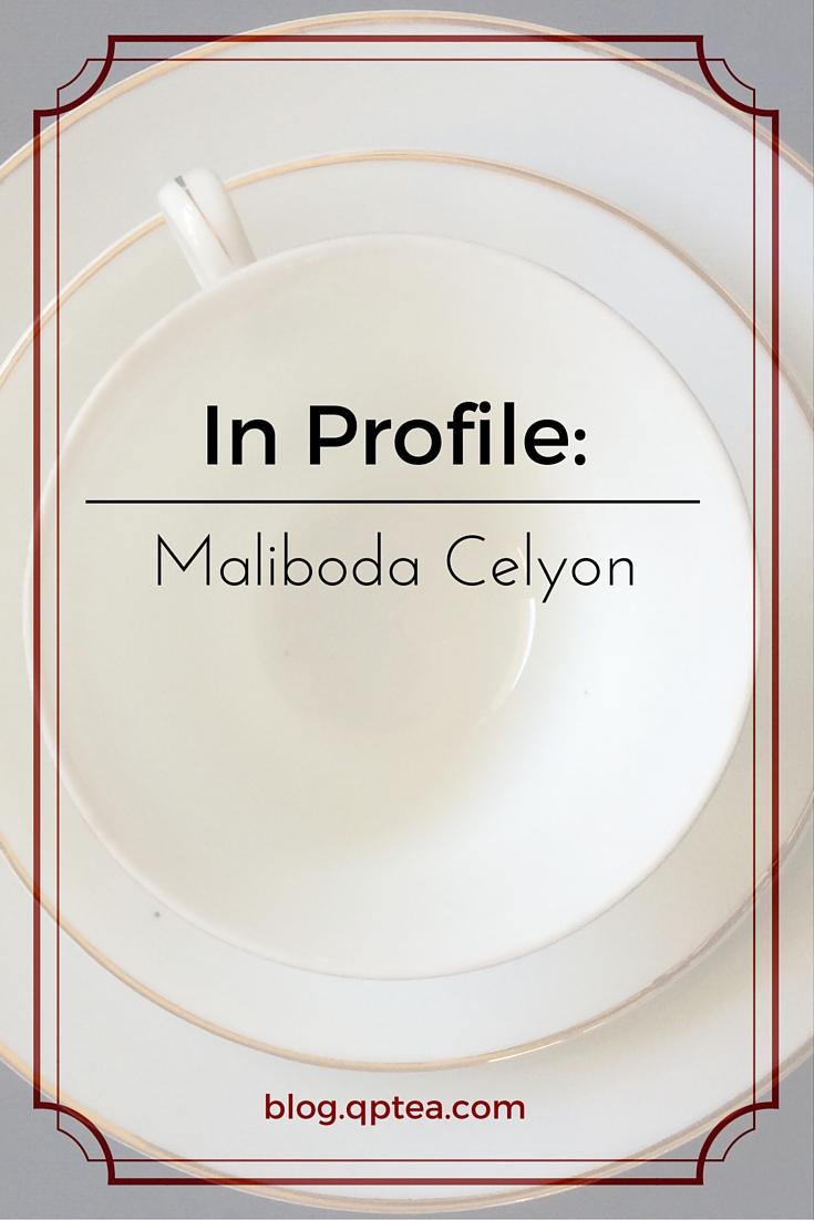 In Profile- Maliboda Celyon